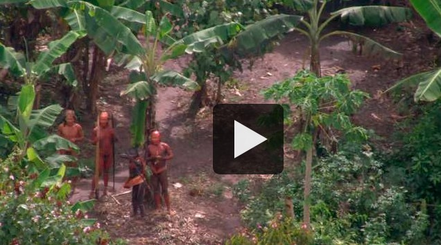 uncontacted Amazon tribe4