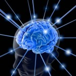 Boost your memory with genetically engineered brain vir...