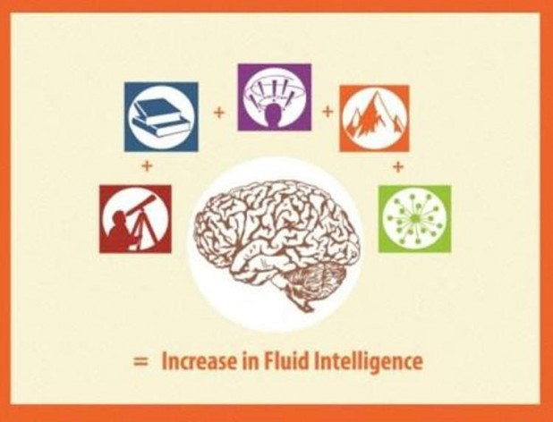 increase intelligence