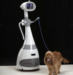 Luna the personal robot