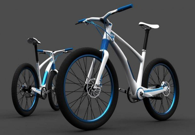 electric bicycle (2)