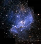 Human Species will one day Migrate to a Parallel Univer...