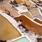 Salt collecting, Sacred Valley