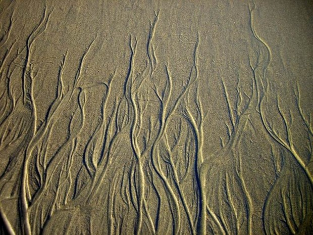 Patterns in Sand (4)