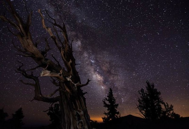 Milky Way (10)