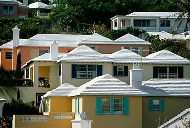 White Roofs (1)
