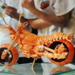 Motorcycle made from Lobster