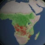 Global Fire Observations