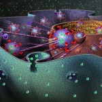 How the biggest Biological Cells work
