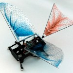 The Origins of Flight with winged robots