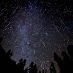 2011 Leonid meteor shower