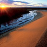 Great Kobuk Sand Dunes