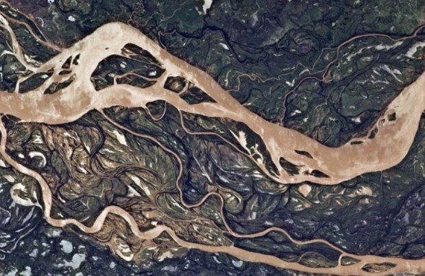 Parana River floodplain in Argentina