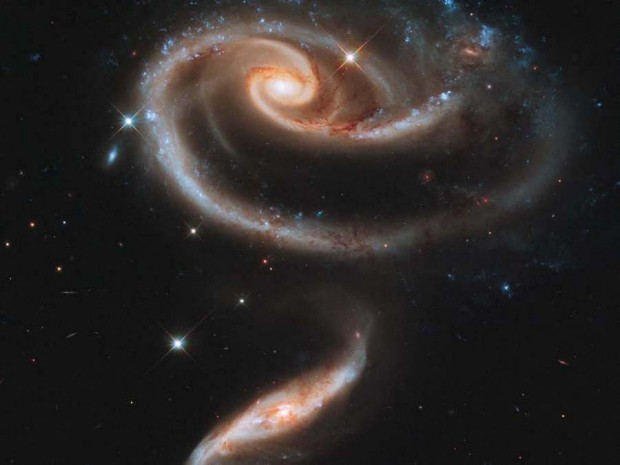 'Rose' made of Galaxies