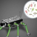 Microbes to Power Space Robots