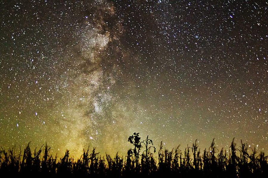 Time-Lapse Starscape Show Heavens in Motion