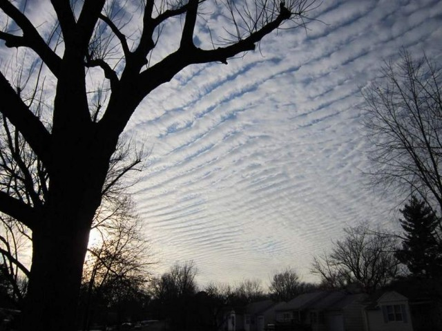 Cirrocumulus sky over Missouri