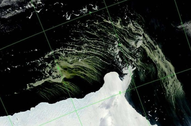 Massive algae bloom off East Antarctica