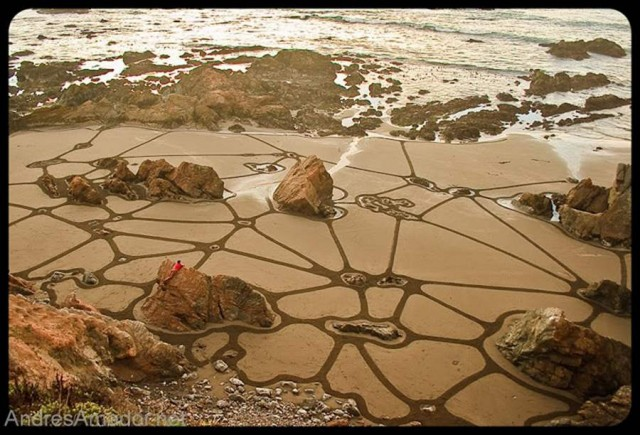 Sand Paintings by Andres Amador (3)