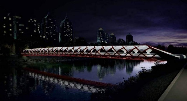Peace Bridge by Santiago Calatrava (2)