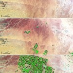 Crop Circles in the Desert