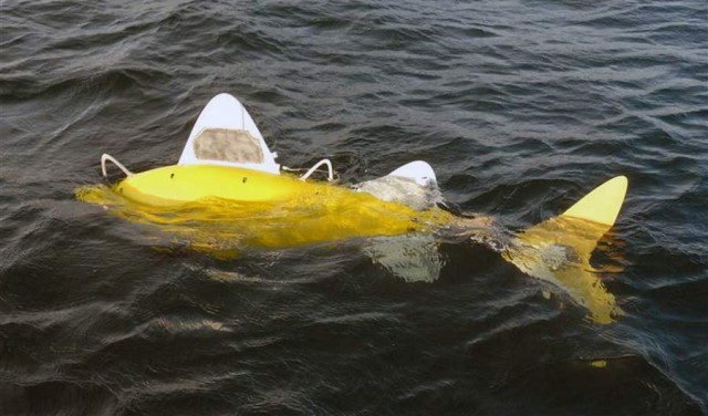 Robotic fish detects Sea Pollution
