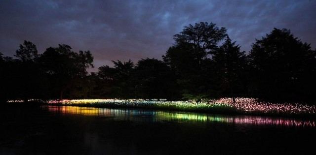 Fields of LED Flowers at Longwood Gardens by Bruce Munro (4)