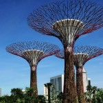 Gardens by the Bay by Grant Associates and Wilkinson Ey...
