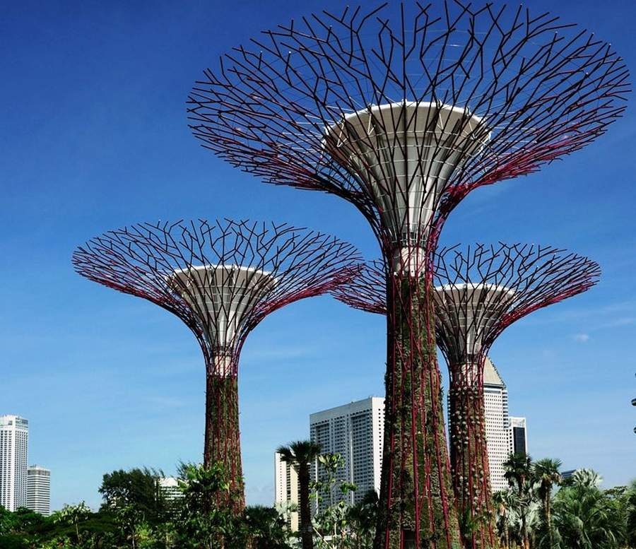 Gardens by the Bay by Grant Associates and Wilkinson Eyre (13)