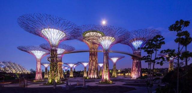 Gardens by the Bay by Grant Associates and Wilkinson Eyre (4)