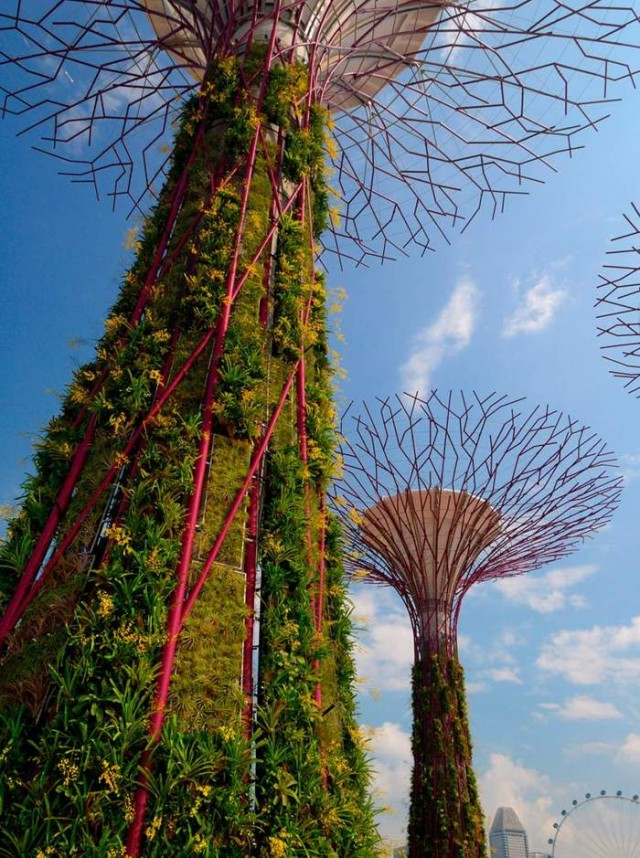 Gardens by the Bay by Grant Associates and Wilkinson Eyre (1)