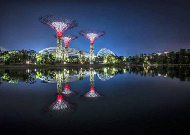 Gardens by the Bay by Grant Associates and Wilkinson Eyre (12)