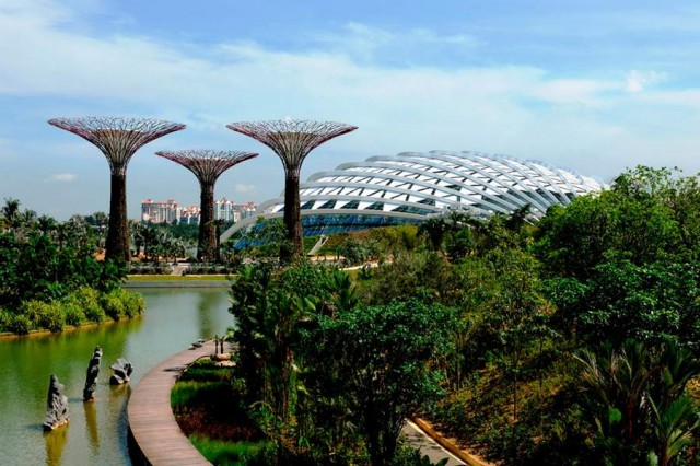 Gardens by the Bay by Grant Associates and Wilkinson Eyre (5)