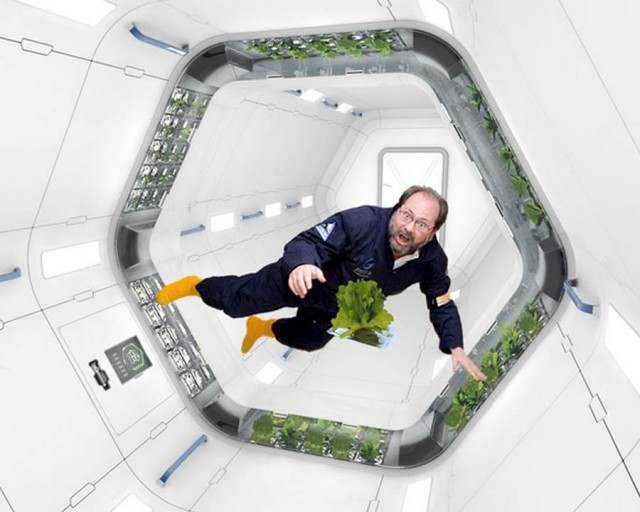 Space Plant by Mirko Ihrig, in collaboration with NASA (4)