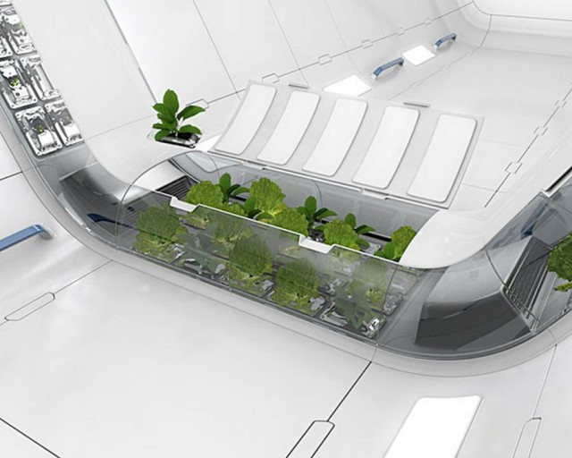 Space Plant by Mirko Ihrig, in collaboration with NASA (3)