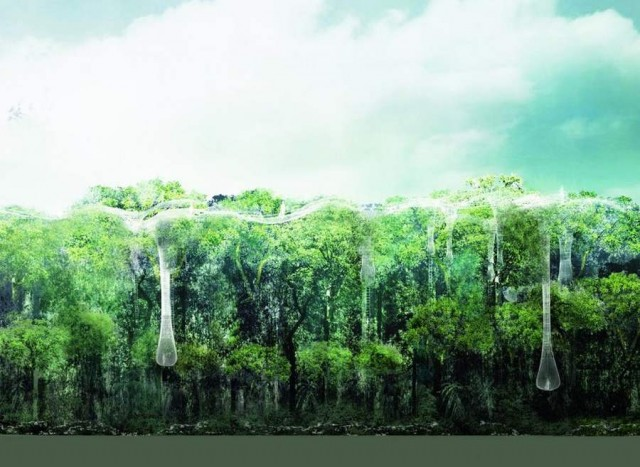 Explorative Canopy Trail wins the 2012 Foster - Partners Prize (2)