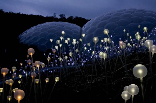 Field of Light by Bruce Munro (2)