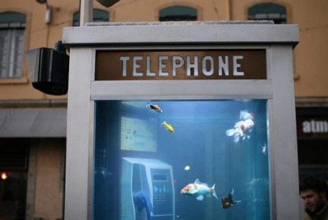 Telephone Booth Aquarium by Benedetto Bufalino and Benoit Deseille