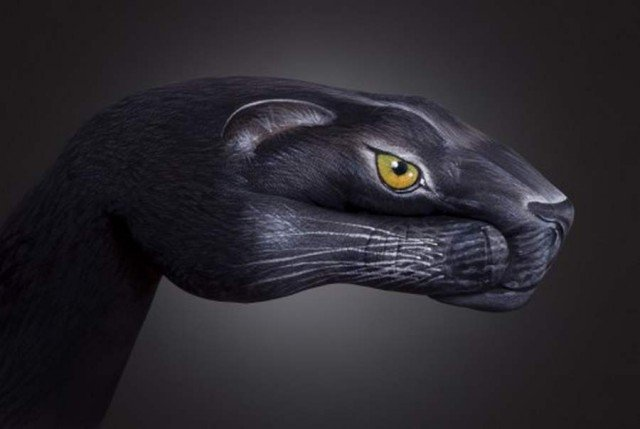 Hand paintings by Guido Daniele (2)