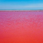 Lake in southern France, turns blood-red