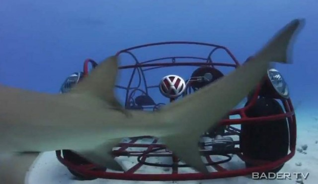 Volkswagen beetle mobile shark cage (7)