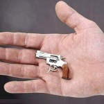 Worlds Smallest Pistol