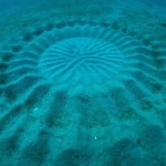 Deep Sea Crop circle mystery solved