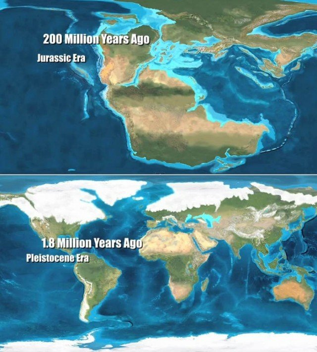 Erth the last 200 million years