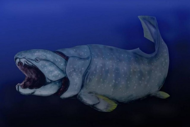 Placoderms Dunkleosteus- armored fish (2)