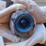 Mysterious Monster Eye