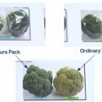 Aura Pack Cellophane keeps vegetables fresh for months