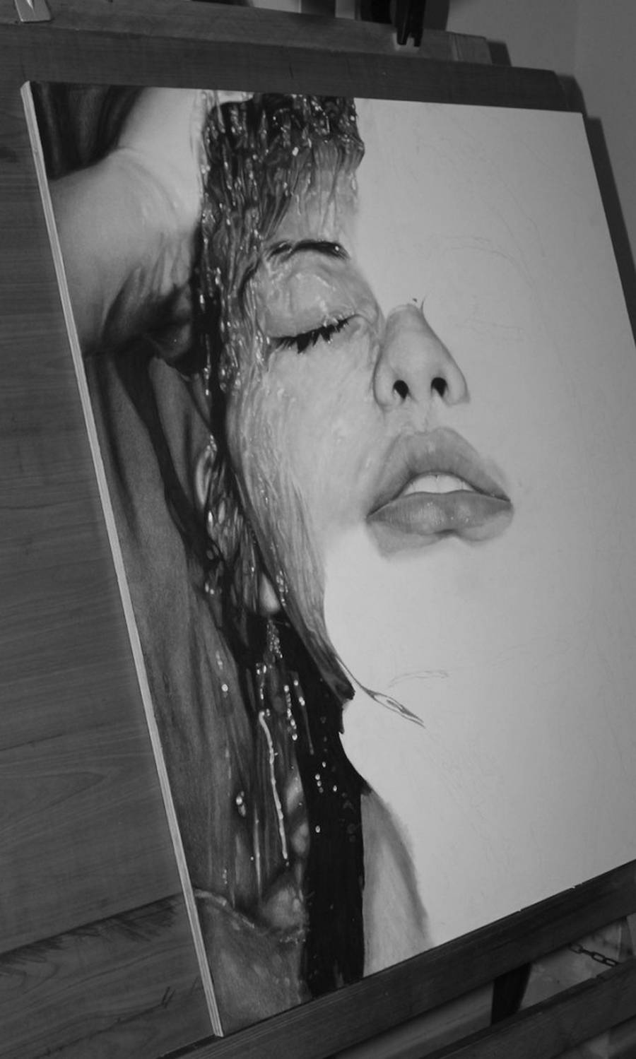Photorealistic Drawings