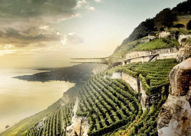 Wine Museum in Lavaux by Mauro Turin Architectes (4)