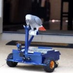 A Parrot drives Bird Buggy car